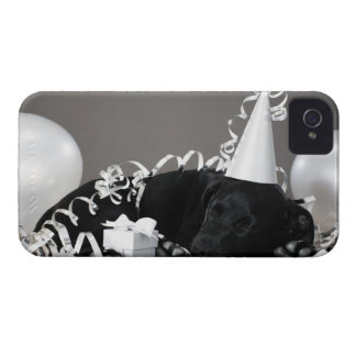 Puppy sleeping in party decorations iPhone 4 cover