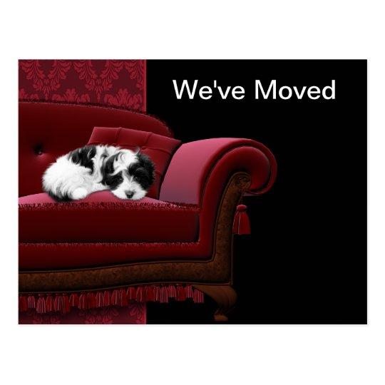 Puppy Sofa Change of Address Postcards