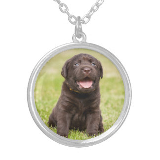 Puppy soft dog silver plated necklace