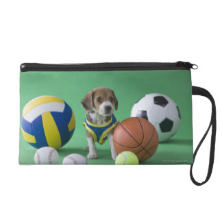 Puppy surrounded by sport balls wristlet