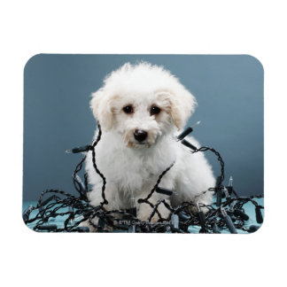 Puppy tangled in Christmas lights Rectangular Photo Magnet