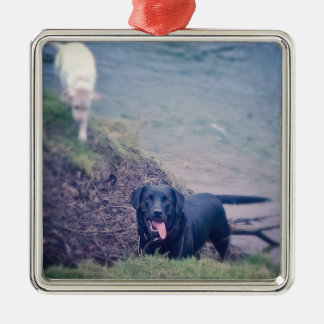 Puppy Walking Silver-Colored Square Decoration