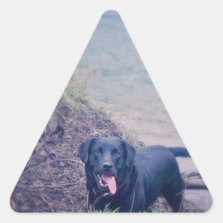 Puppy Walking Triangle Sticker