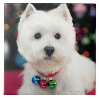 Puppy wearing Christmas bell on neck Tiles