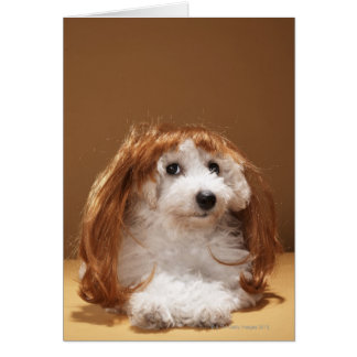 Puppy wearing ginger wig greeting card