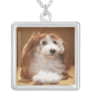 Puppy wearing ginger wig jewelry