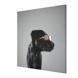Puppy wearing glasses canvas print