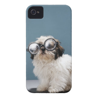 Puppy wearing thick glasses iPhone 4 cover