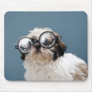 Puppy wearing thick glasses mouse mat