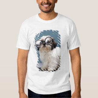 Puppy wearing thick glasses shirt