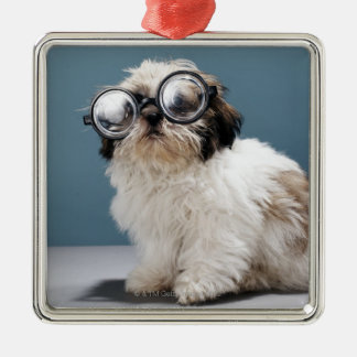 Puppy wearing thick glasses Silver-Colored square decoration