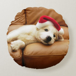 Puppy wears a christmas hat and lying on sofa round cushion