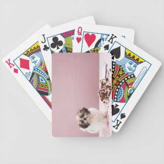 Puppy with cake on floor bicycle playing cards