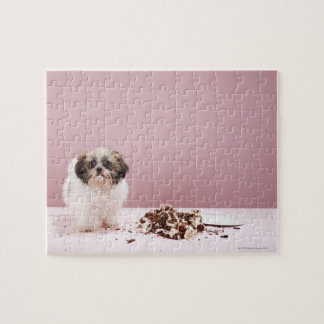 Puppy with cake on floor jigsaw puzzle