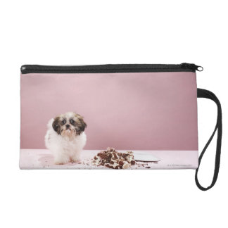Puppy with cake on floor wristlet