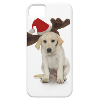 Puppy with Santa Hat and Reindeer Ears Case For The iPhone 5