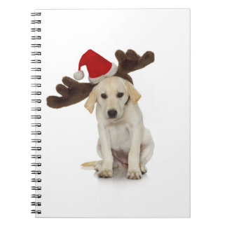 Puppy with Santa Hat and Reindeer Ears Notebooks