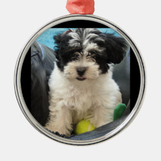 Puppy with Tennis Ball  Rescue Christmas Ornament