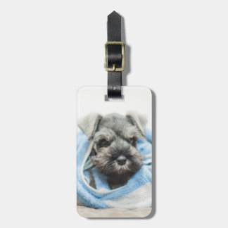 Puppy wraps with towel. luggage tag
