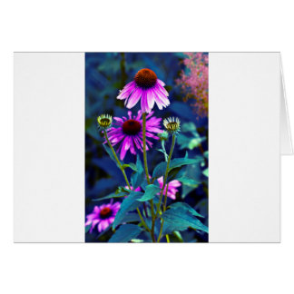 PUR-polarize Coneflowers Greeting Card