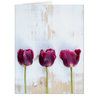 PUR-polarize tulips on white rustic wooden backgro Big Greeting Card