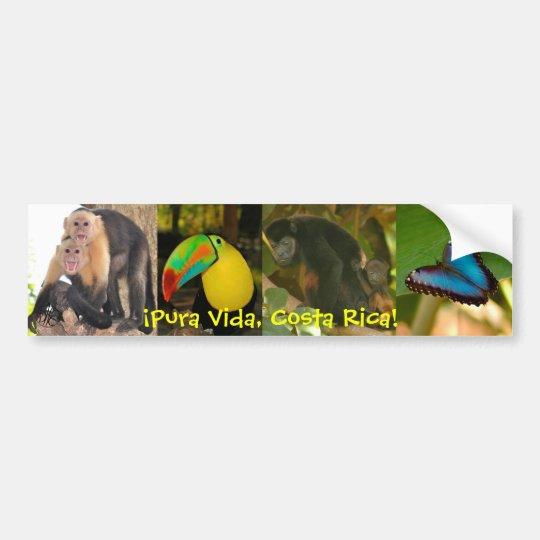 Pura Vida Costa Rica bumper sticker