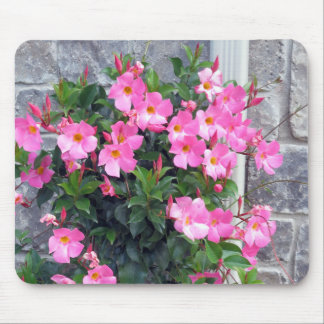 PURE PINK FLOWERS SHOW TEMPLATE UTILE MOUSE PAD