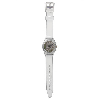 Purity Watch