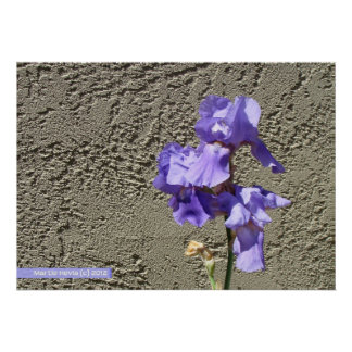 Purple Against the Wall Print