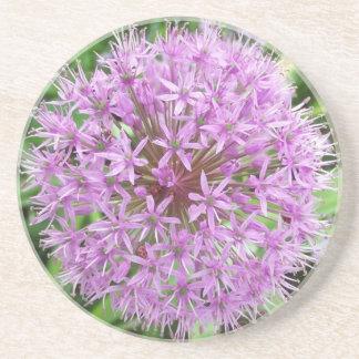 Purple Allium Coaster