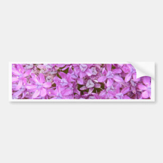 Purple Allium Flower Bumper Stickers