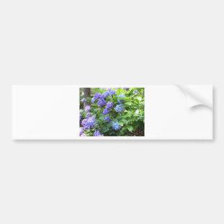 Purple and blue Hydrangea flowers Bumper Sticker