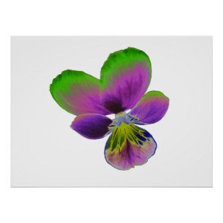 Purple and Green Pansy Print