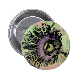 Purple and Green Passion Flower Bloom Pinback Buttons