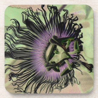 Purple and Green Passion Flower Bloom Beverage Coasters