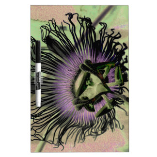 Purple and Green Passion Flower Bloom Dry-Erase Whiteboards