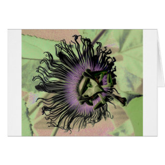 Purple and Green Passion Flower Bloom Greeting Card