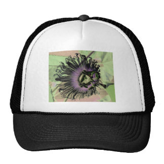 Purple and Green Passion Flower Bloom Trucker Hats