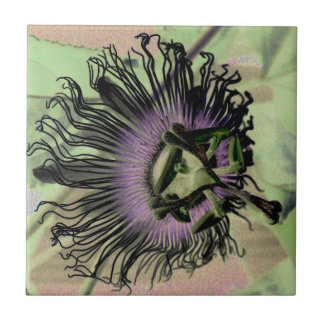 Purple and Green Passion Flower Bloom Small Square Tile