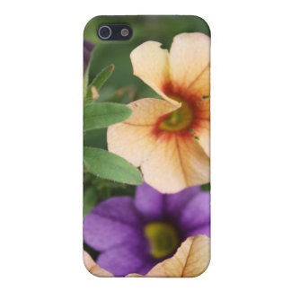 Purple and Peach Flowers iPhone 5 Covers