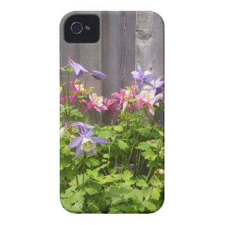Purple and Pink Columbines iPhone 4 Cover