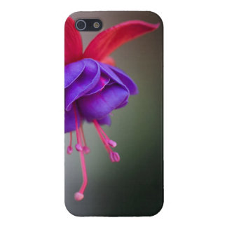 Purple and Red Fuchsia Flower iPhone 5 Cover
