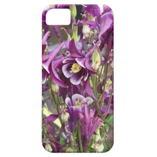 Purple and White Columbines iPhone 5 Cases
