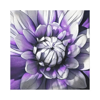 Purple and White Dahlia Canvas Print