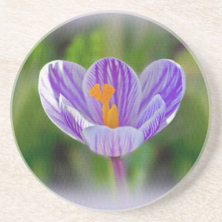 Purple and White Day Lily Coaster Drink Coasters