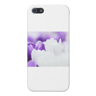 Purple and White flower background Cover For iPhone 5/5S