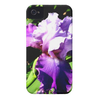 Purple and White Iris iPhone 4 Covers