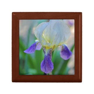 Purple and White Iris Small Square Gift Box