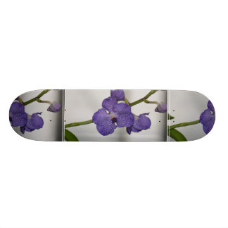Purple and White Orchids Skateboards
