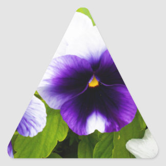 Purple_And_White_Pansies,_ Triangle Sticker